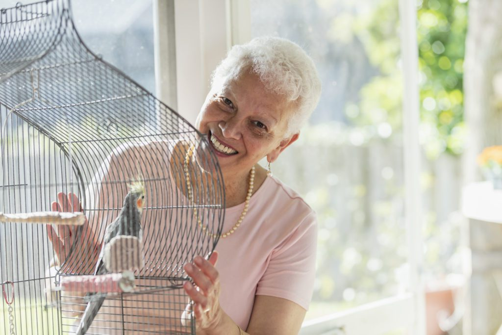 A senior woman taking care of her bird inside the cage