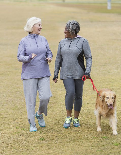 Two senior friends walking with a dog